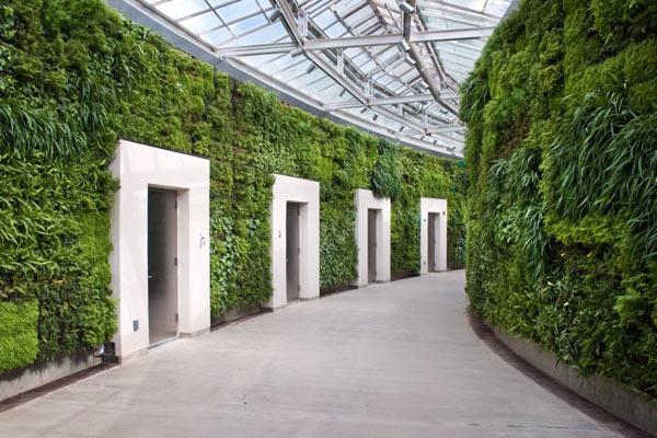 «Зеленые домики» в парке Лонгвуд
