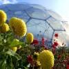 В Великобритании занялись строительством автономных экосистем