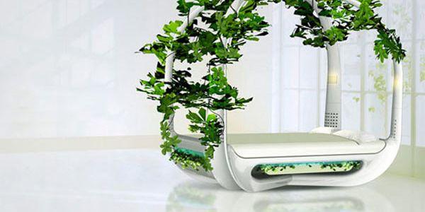 Кровать-цветник, преобразующая сон в энергию