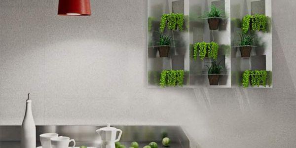 Озеленение помещений кофейными стаканчиками — Naturwall