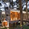 Вилла Casa Corallo в интерьере деревьев