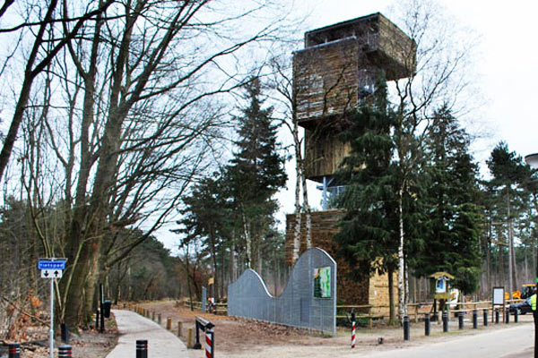 Дом-башня среди деревьев