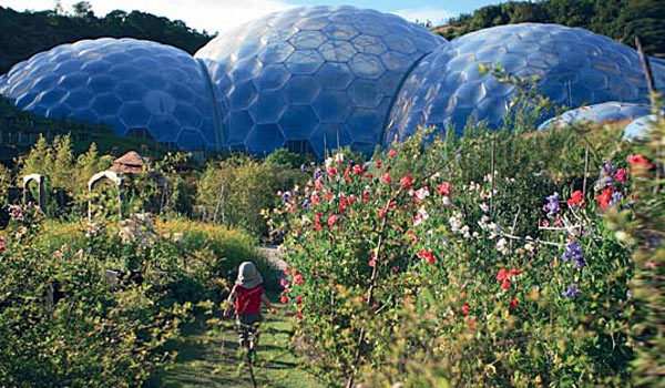 Eden Project bubble biomes