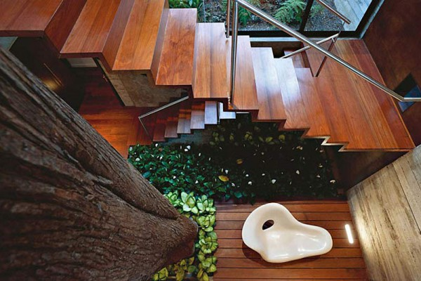 Вилла Casa Corallo в интерьере деревьев.